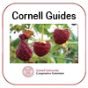 Cornell Berry Guide