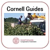 Cornell Grape Guide