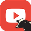 Livestock youtube icon