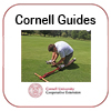 Cornell Guide for Commercial Turfgrass Management