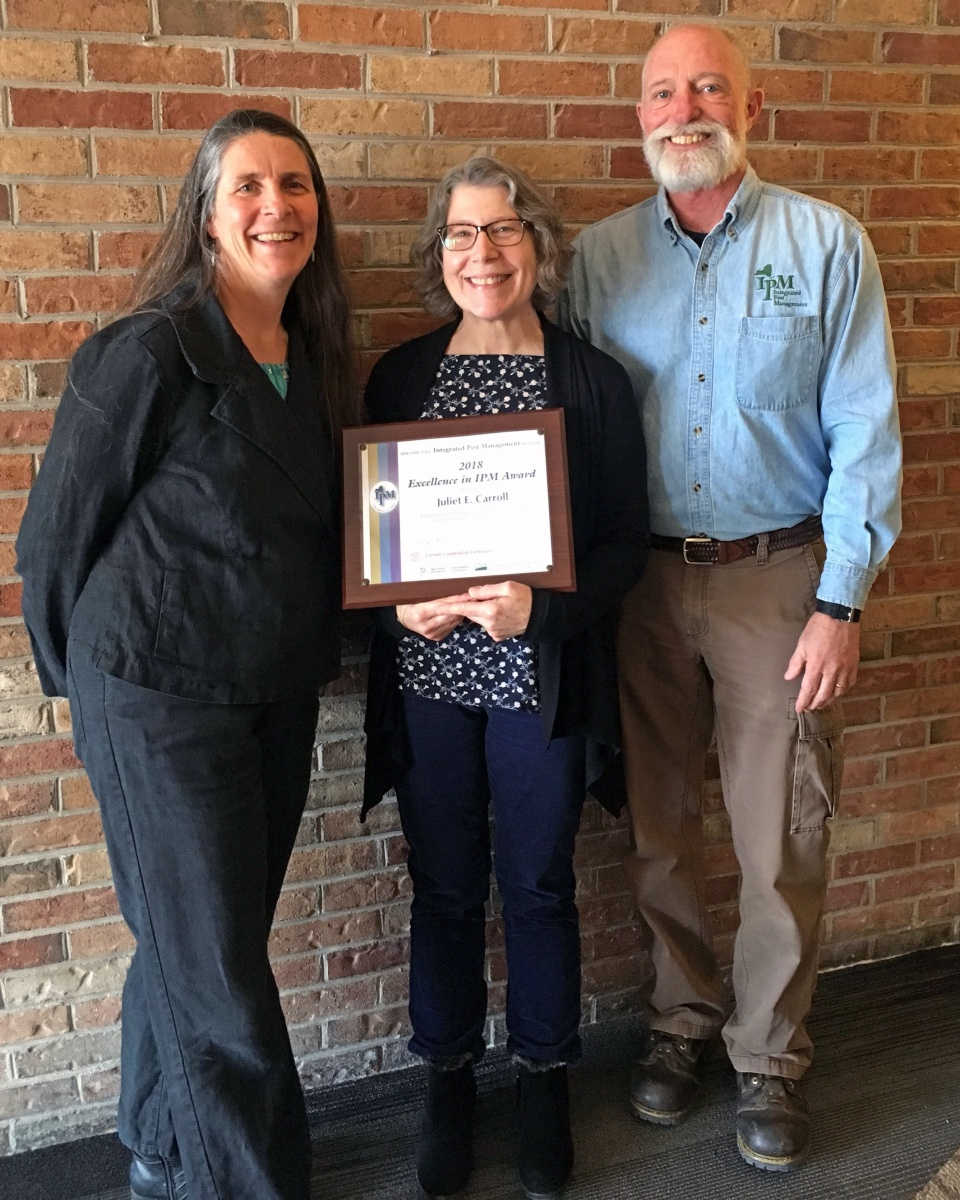 Julie Carroll recieving her IPM award, with Jennifer Grant and Tim Weigle.