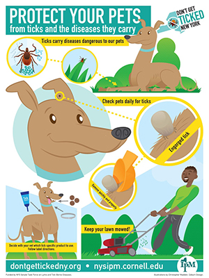 Protect Your Pets from ticks and the diseases they carry