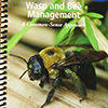 Wasp and Bee Management