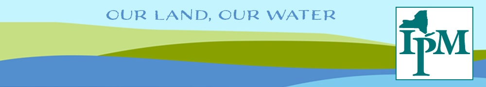 simple graphic of blue water against green hills against a pale blue sky, on which is written Our Land, Our Water