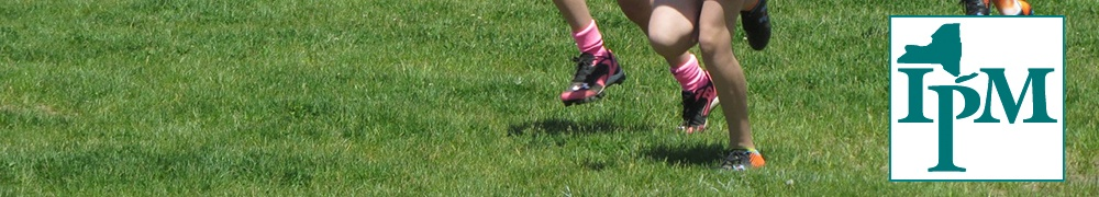 lacrosse players' feet on turfgrass