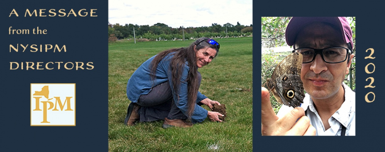 """""""A Message from the NYSIPM Directors"""", the NYSIPM logo, photo of Jennifer Grant kneeling while examining soil, and a photo of Alejandro Calixto looking at a Cecropia moth perched on his finger"""