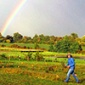 Woman in a field with a beautiful rainbow in the background